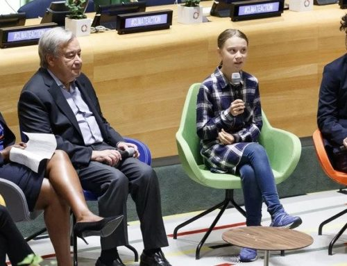From the streets to the summit: Young climate leaders mobilise at UN (from RTE.ie)